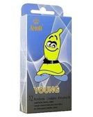 Young - ściślejsze przyleganie (12 szt.)